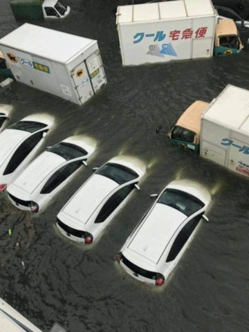 台風21号で神戸に被害が出ました。