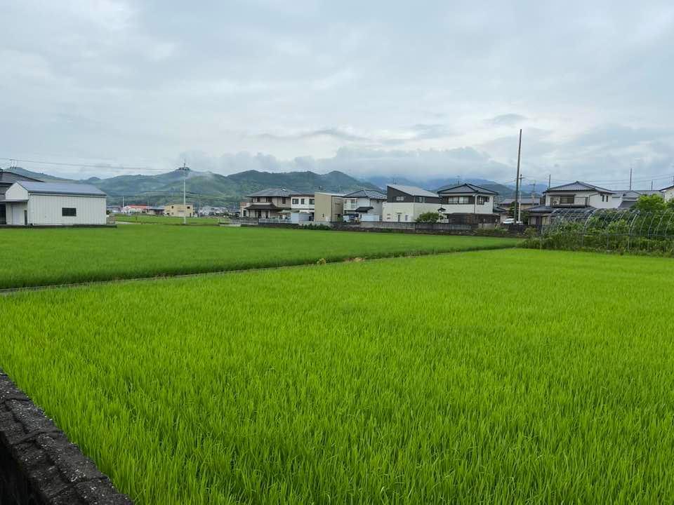 兵庫県の各地域に大雨警報が出ています。