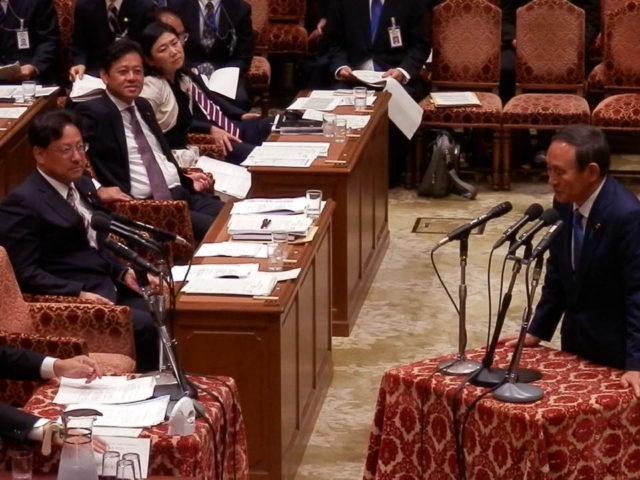 内閣委員会審議に理事として参加しました。